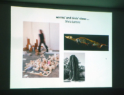 Lecture WORMS´ AND BIRDS´ VIEWS by Silvia Lorenz